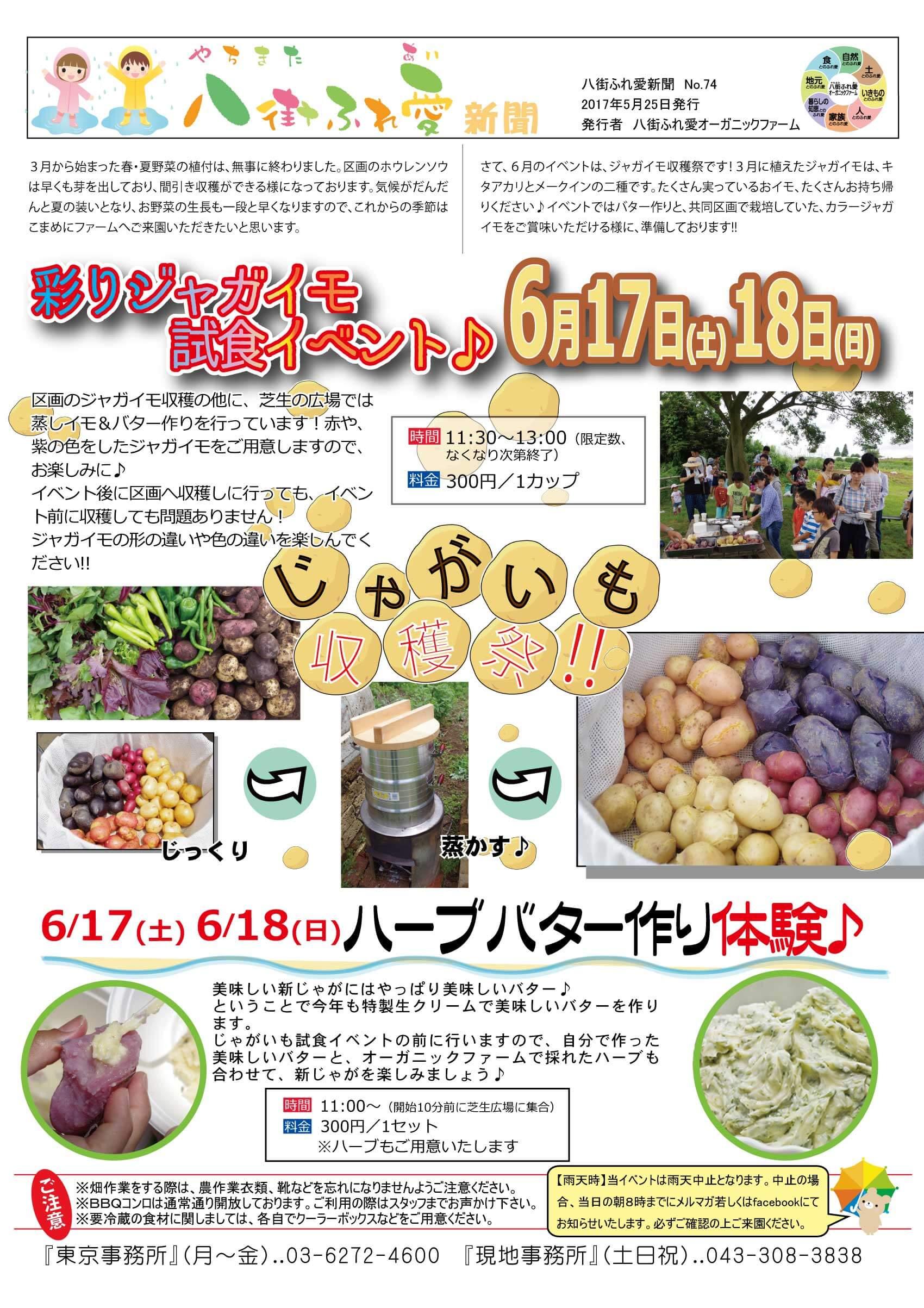 彩りジャガイモ試食イベント 区画のじゃがいも収穫の他に、芝生の広場では蒸しイモ&バター作りを行っています!赤や、紫の色をしたジャガイモをご用意しますのでお楽しみに♪イベント後に区画へ収穫しに行ってもイベント前に収穫しても問題ありません!ジャガイモの形の違いや色の違いを楽しんでください!6/17(土)6/18(日)ハーブバター作り体験♪美味しい新じゃがにはやっぱり美味しいバター♪ということで今年も特製生クリームで美味しいバターを作ります。ジャガイモ試食イベントの前に行いますので、自分で作った美味しいバターと、オーガニックファームで採れたハーブも合わせて、新じゃがを楽しみましょう♪