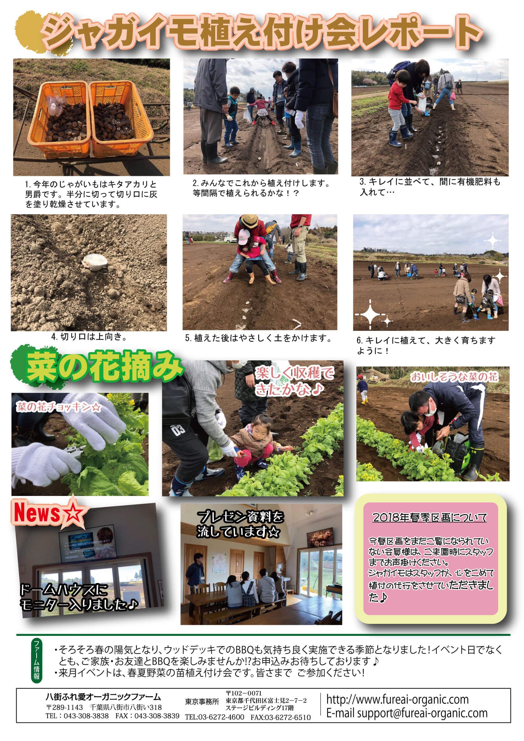 ジャガイモ植え付け会レポート